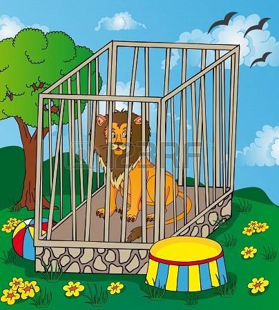 16843460 lion en cage