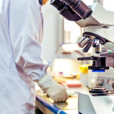 440271 atelier experiment kickstarter de recherche scientifique