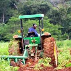 """L'agriculture sera à l'origine de la """"révolution tranquille"""" en Afrique"""