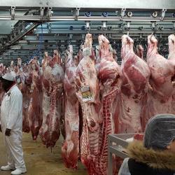 L'Afrique du Sud reprend les exportations de boeuf vers la Chine après la levée de l'interdiction