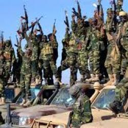 Cameroun : trois civils tués par Boko Haram dans l'Extrême-Nord