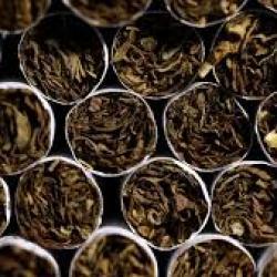 Djibouti : le gouvernement créera une Régie nationale du Tabac