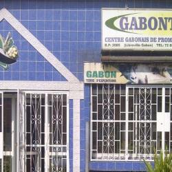 Gabon : le gouvernement en quête d'une stratégie nationale pour booster le tourisme