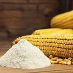 Le Kenya réduit de 60% le prix de la farine de maïs pour aider ses citoyens