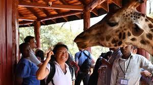 """Essor du tourisme chinois en Afrique avec """"la Ceinture et la Route"""""""