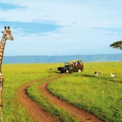 L'industrie du tourisme emploie plus de 21 millions de personnes en Afrique (UA)