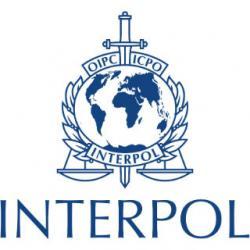 Interpol souhaite une coopération solide pour affronter la criminalité transfrontalière en Afrique