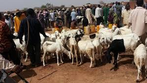 """Niger : début du festival annuel des éleveurs ou """"Cure salée"""" à Ingall (nord)"""