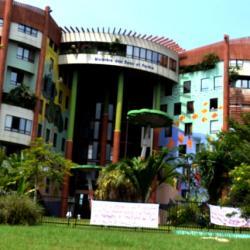 Ministère des eaux et forêts Libreville(Gabon)