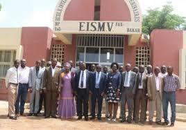 Un ministre togolais élu président du conseil d'administration de l'EISMV