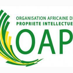 Une dizaine d'inventeurs et de sociétés décrochent des prix de l'Organisation africaine de la propriété intellectuelle