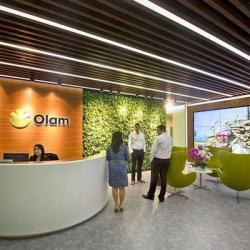 Togo : l'Etat cède 51% de ses parts dans la société nationale de coton au groupe singapourien Olam