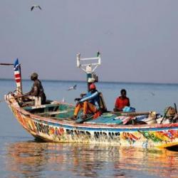 Dermatose chez des pêcheurs sénégalais : les résultats d'analyses orientées vers les toxicologues