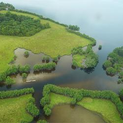 Vue aérienne du parc de Loango
