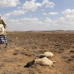 Soudan du Sud : la faim s'aggrave en raison de la sécheresse, des inondations et d'un avenir incertain (PAM)