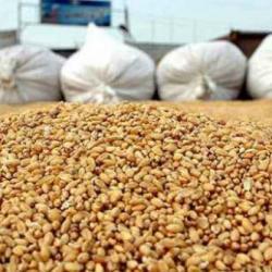 La CEDEAO vole au secours des nigériens à travers un don de plus de 6 500 tonnes de céréales