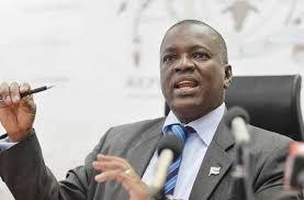 Le Botswana va remanier ses lois sur l'immigration pour attirer les investisseurs