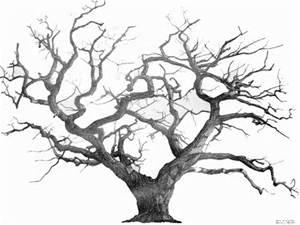 Conte : L'arbre qui voulait rester nu